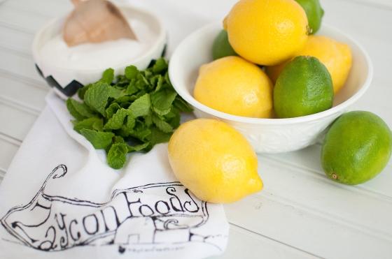 Zaycon Foods- mint limeade