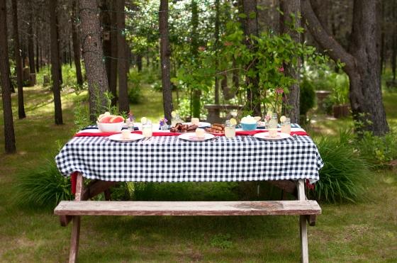 Zaycon Foods -patriotic picnic