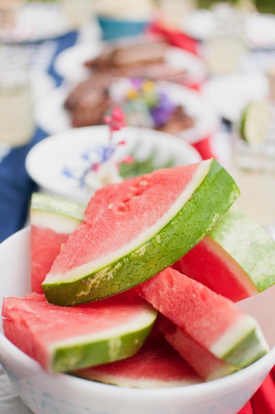 Zaycon Foods-patriotic picnic